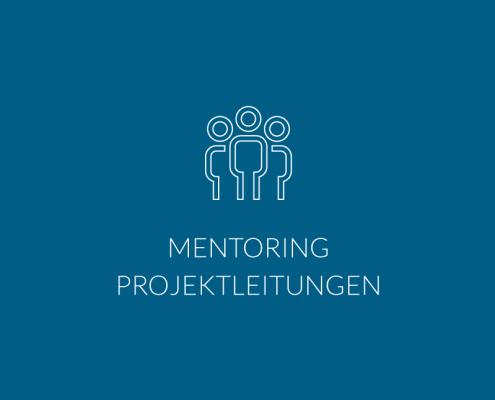 Mentoring Projektleitungen